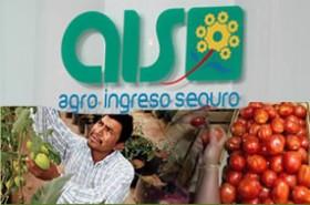 agro-ingreso-seguro