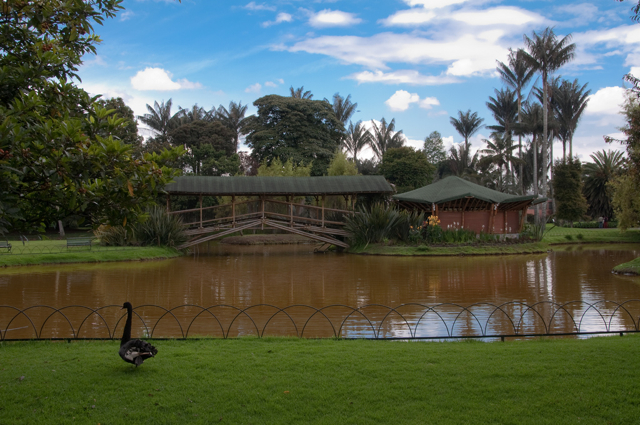 Proximamente la ruta del agua en el jard n bot nico bogot for Jardin botanico u de talca