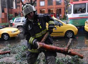 bombero-arbol