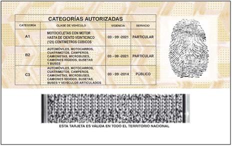licencia-nueva-atras
