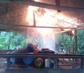 Destruidos 9 laboratorios de coca
